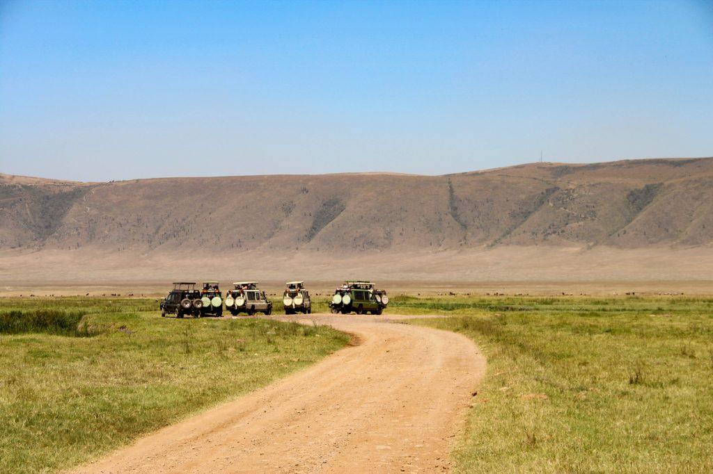 Ngorongoro Krateri Doğal Koruma Parkı, Tanzanya, Safari