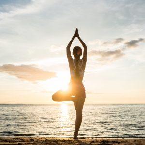 Ayurveda | Yoga