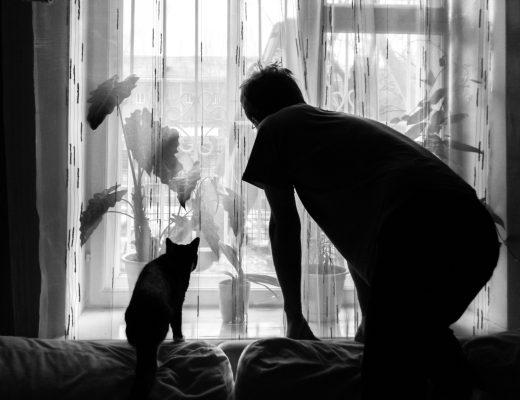 Öykü: Gölge | Yazar: Beril Erem