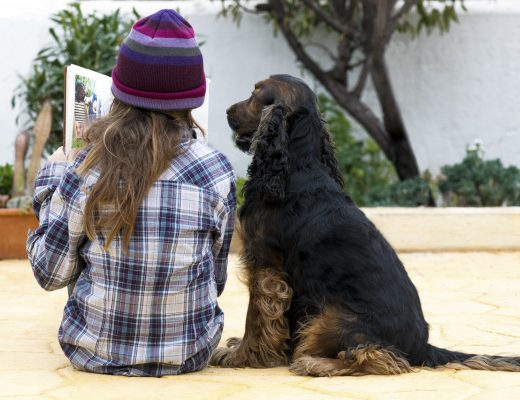 Yazı: O Benim Köpeğim | Yazan: İlayda Varol