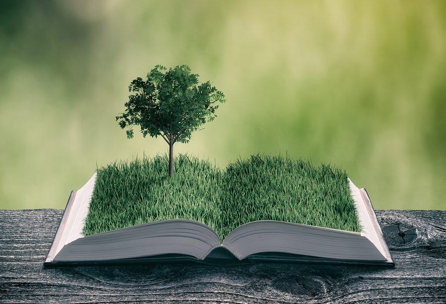 Yazı: İtiraf Ediyorum: Takıntılı Bir Kitap Oburuyum | Yazan: Şenül Korkusuz