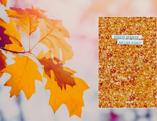 Kitap: Ah'lar Ağacı | Yazar: Didem Madak | Yorumlayan: Kübra Mısırlı Keskin
