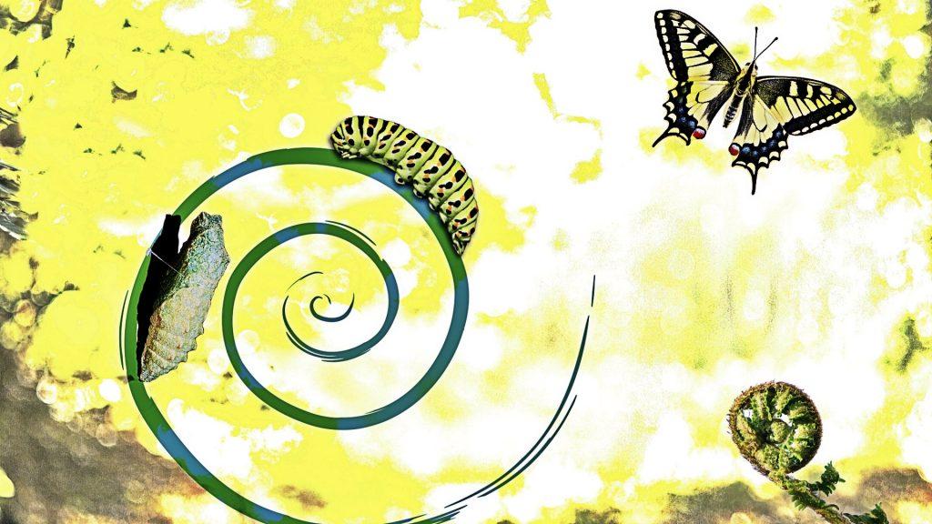 Yazı: Değişim, Dönüşüm, Gelişim | Yazan: Nalan Erpolat