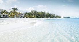 Yazı: Grand Cayman | Yazan: Emel Erem