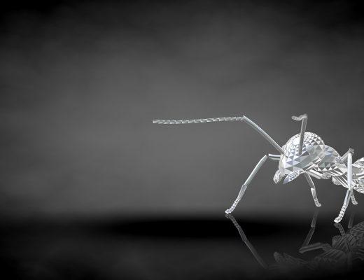 Şiir: Karınca Yüreğinde Hayat | Yazan: Mehmet Gökcük