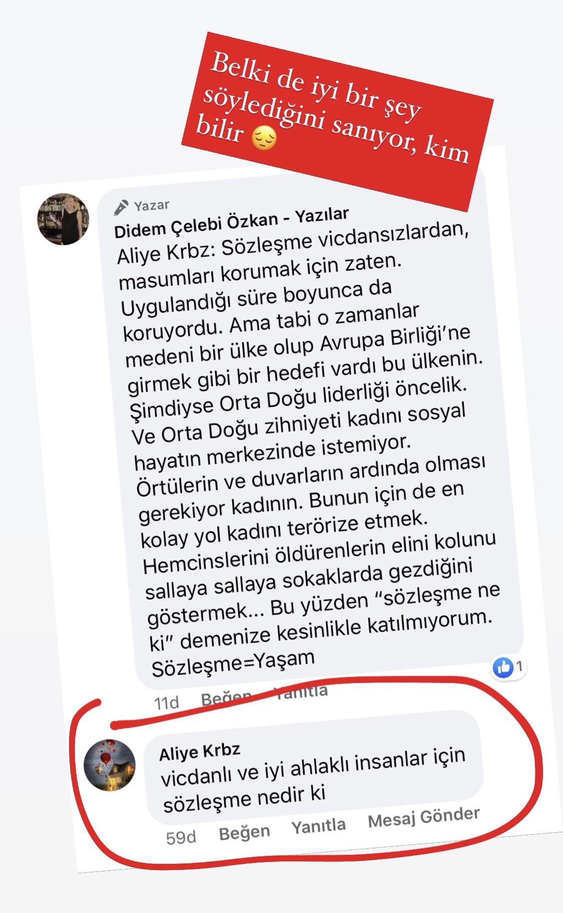 Anne, Gitme!   Didem Çelebi Özkan Yazılar Facebook Sayfası Yorumları   01