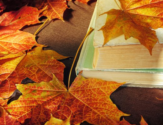 Yazı: Eylül | Yazan: İlayda Oylum Güleryüz