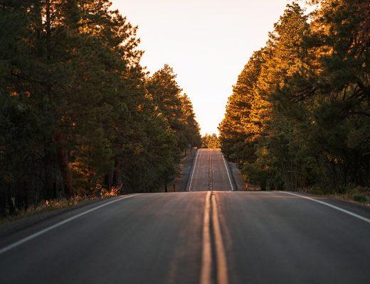 Öykü: 1 Hafta, Biraz da Kilometre - 4 | Yazan: Sıla Malık