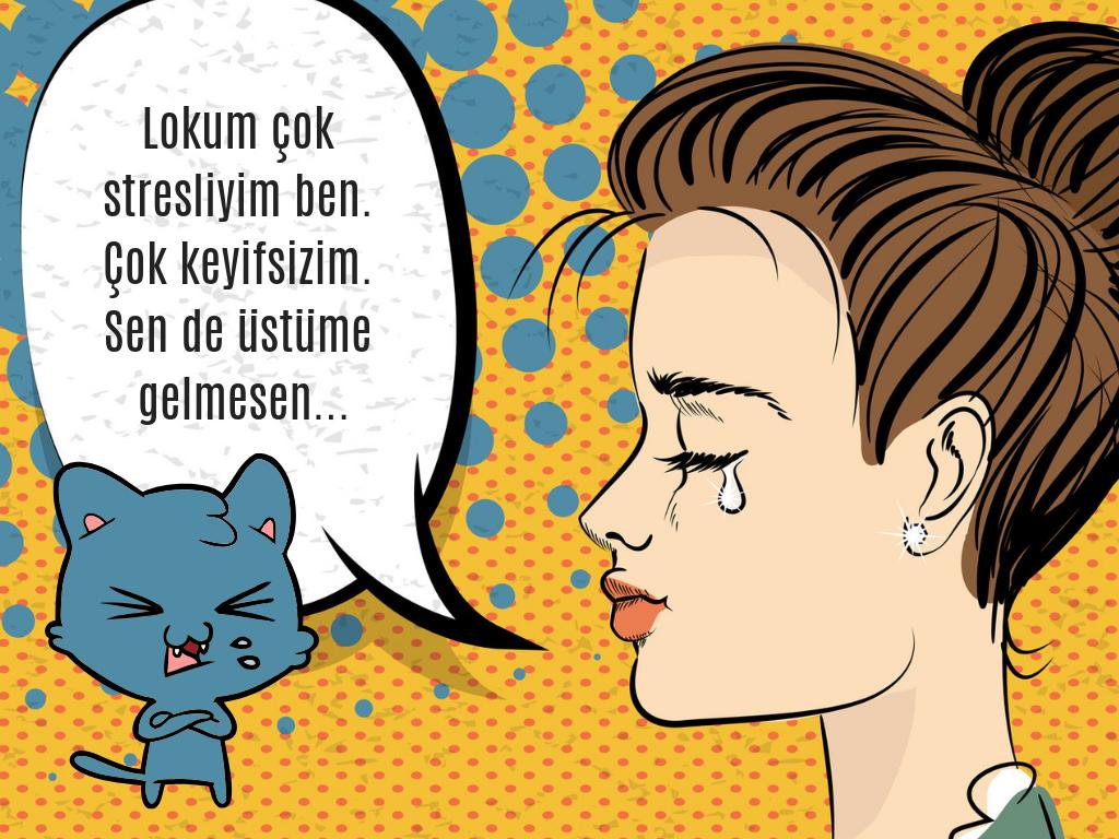 Yazı: StresSavar Kedi Lokum | Yazan: Merve Çevik