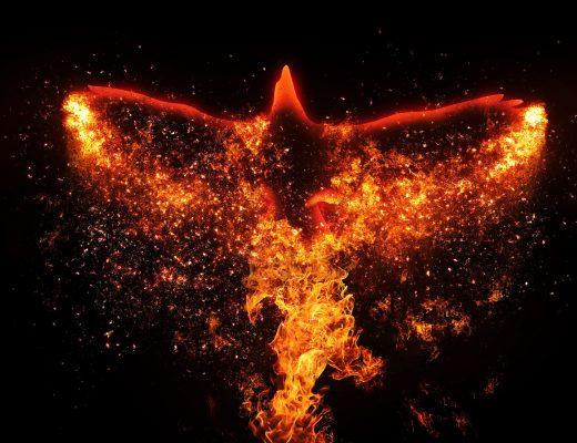 Öykü: Aşka Düşmek   Yazar: Ateş Karadeniz