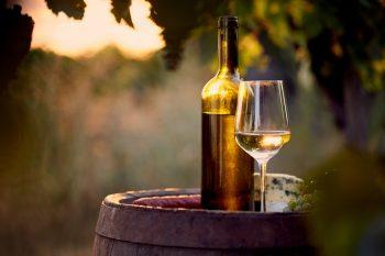 Üzüm bağı. Fıçı üzerinde şarap şişesi ve kadeh