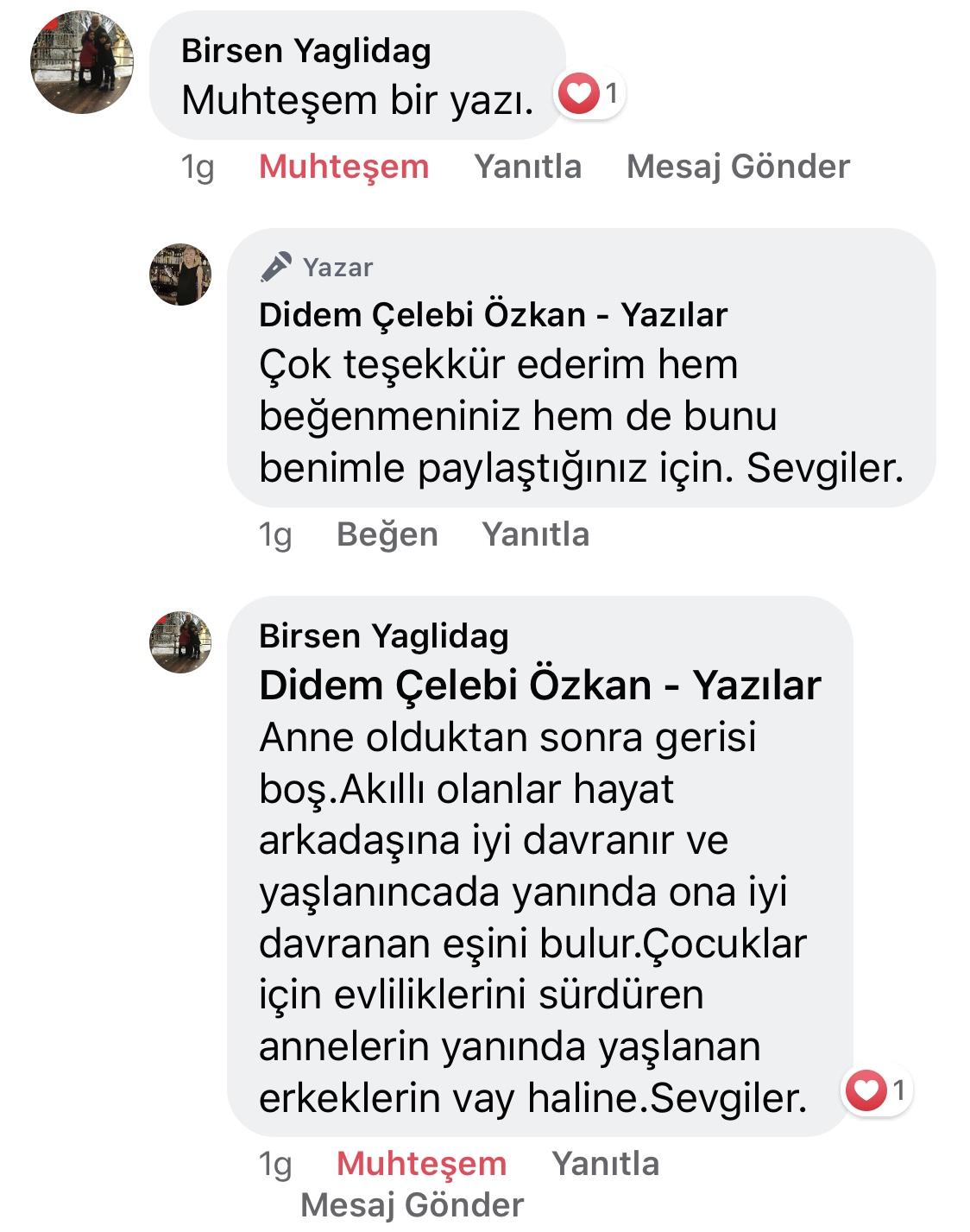 Koca! | Didem Çelebi Özkan Yazılar Facebook Sayfası Yorumları | 10