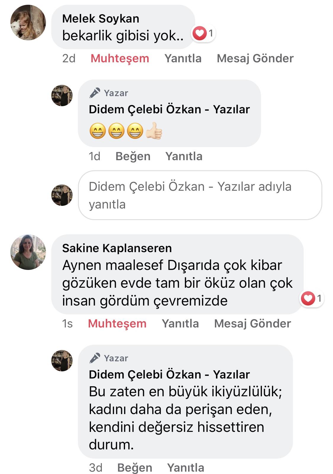 Koca! | Didem Çelebi Özkan Yazılar Facebook Sayfası Yorumları | 09