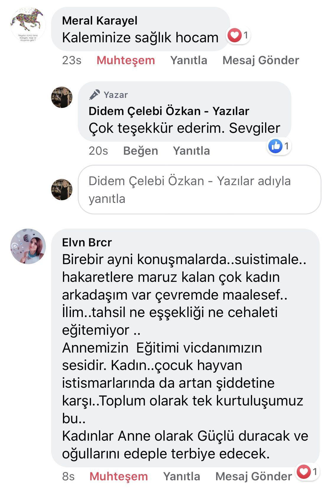 Koca! | Didem Çelebi Özkan Yazılar Facebook Sayfası Yorumları | 02