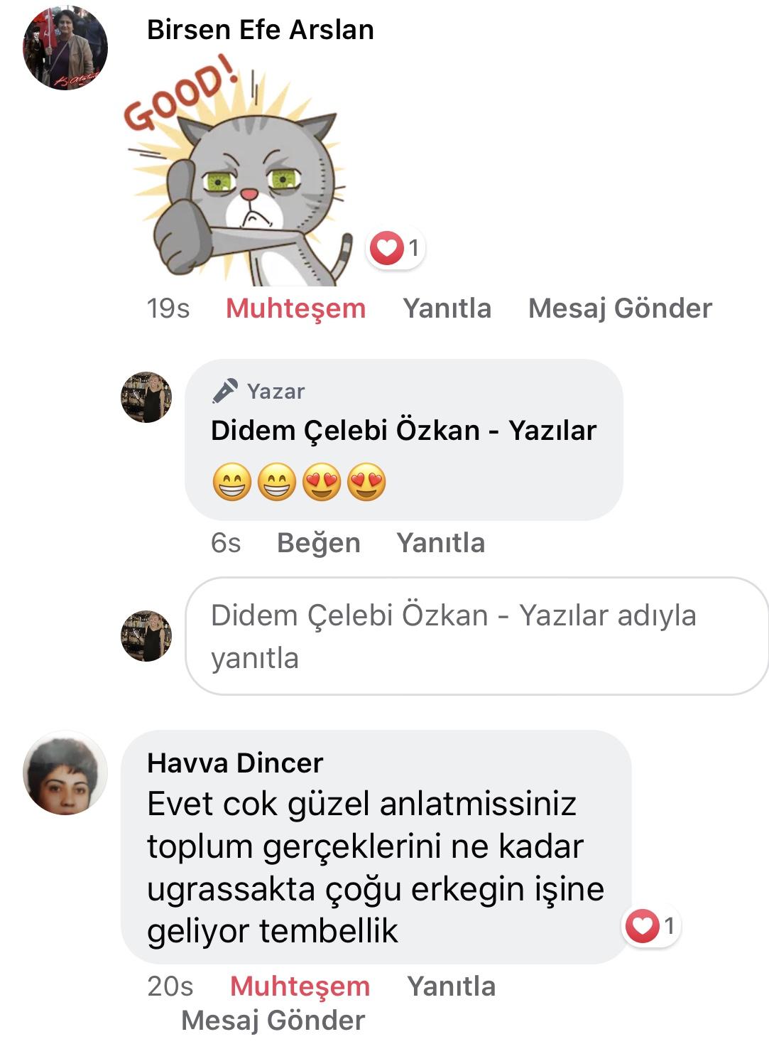 Koca! | Didem Çelebi Özkan Yazılar Facebook Sayfası Yorumları | 15