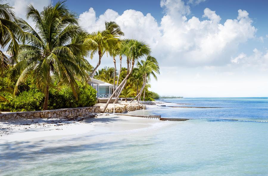 Yazı: Grand Cayman   Yazan: Emel Erem