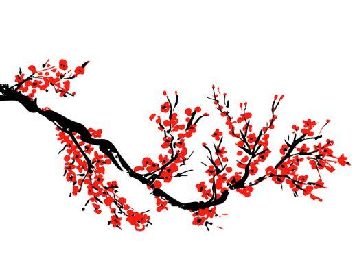 Yazı: Sakura | Yazan: Nurdan Yılmaztürk