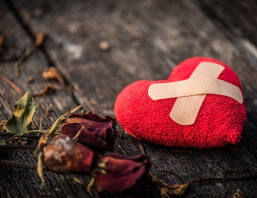 Yazı: Kabuk | Yazan: Gökçe Çiçek Gönülaçar