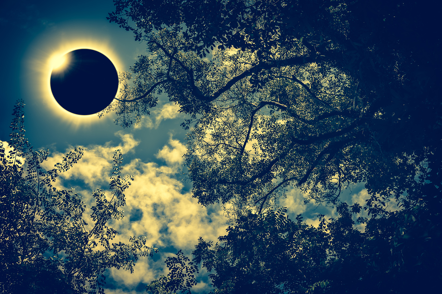 Yazı: 21 Haziran: Yengeç Burcunda Güneş Tutulması | Yazan: Hazal Özkan