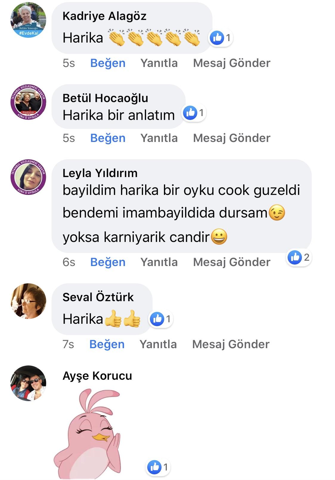 Karnıyarık | Zeynep Mete | SenVeBen Facebook Sayfası Yorumları | 15