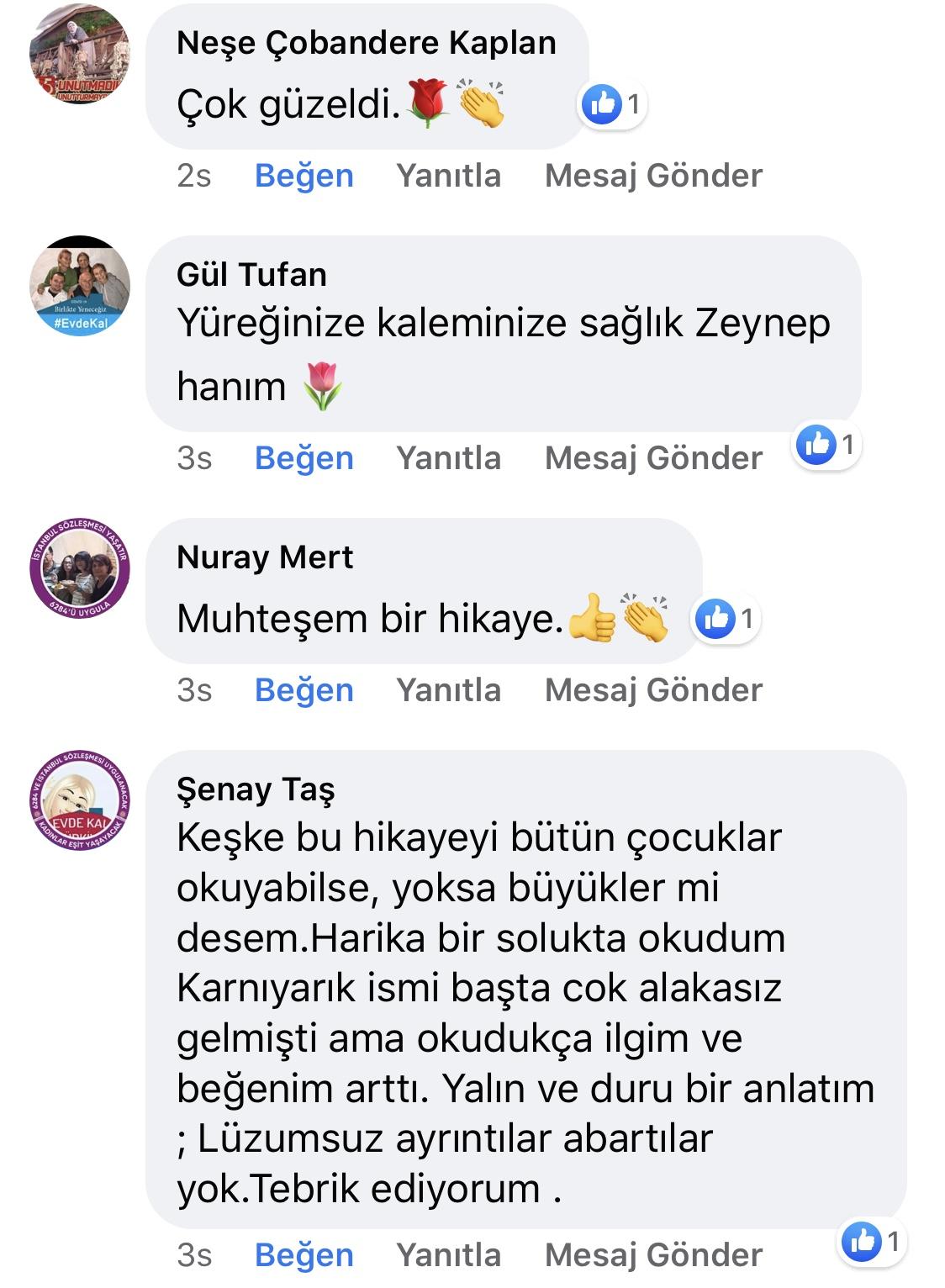 Karnıyarık | Zeynep Mete | SenVeBen Facebook Sayfası Yorumları | 02