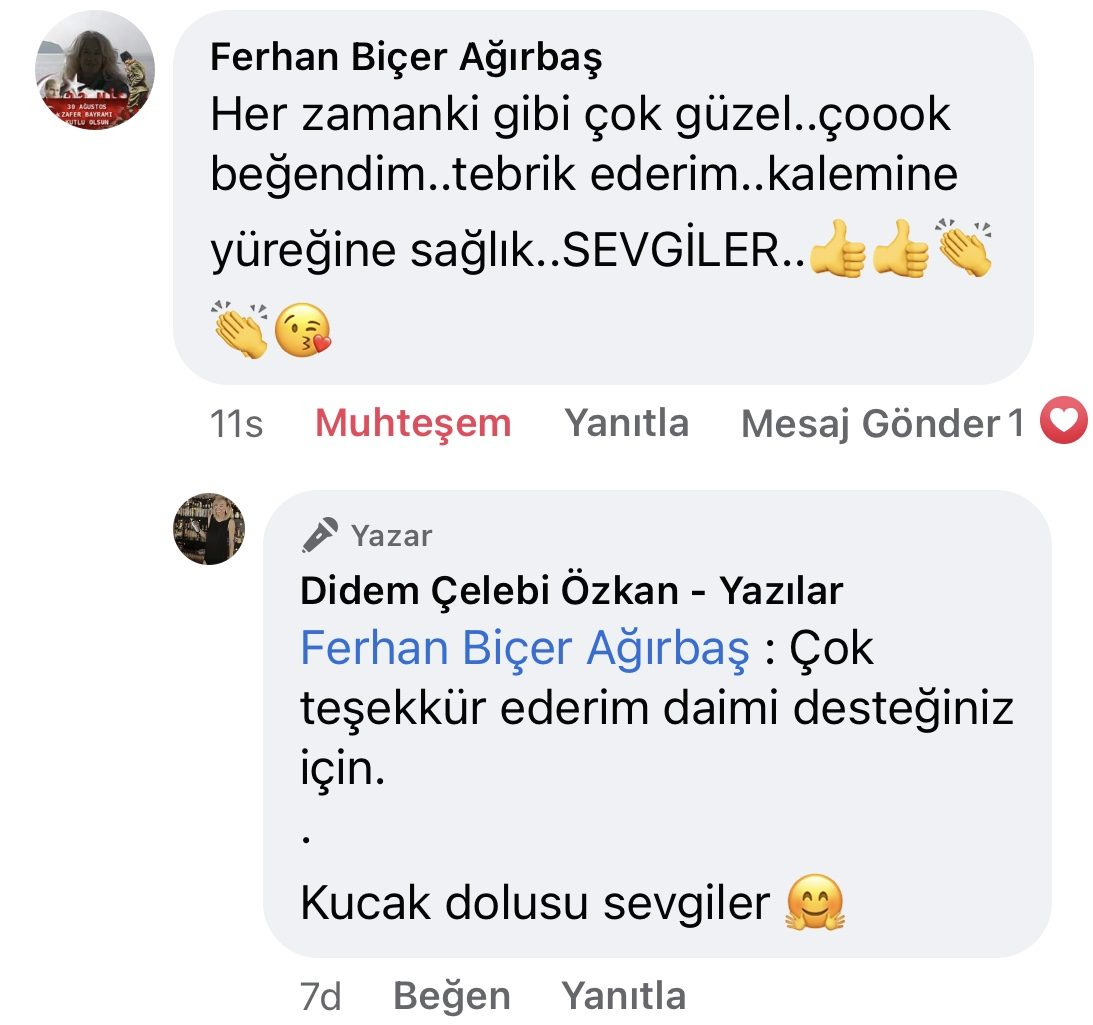Hezeyan | Didem Çelebi Özkan Yazılar Facebook Sayfası Yorumları | 11