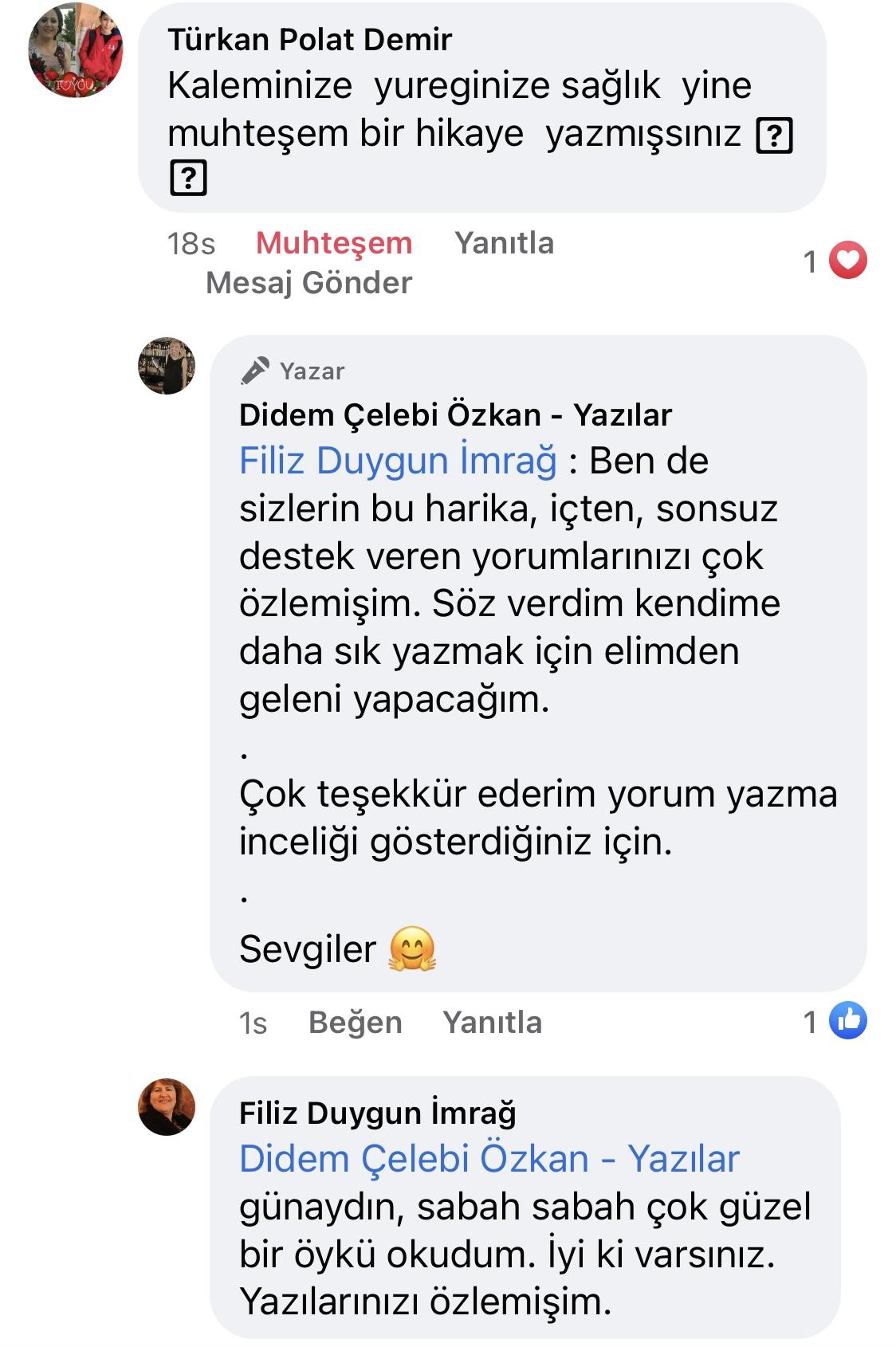 Hezeyan | Didem Çelebi Özkan Yazılar Facebook Sayfası Yorumları | 04
