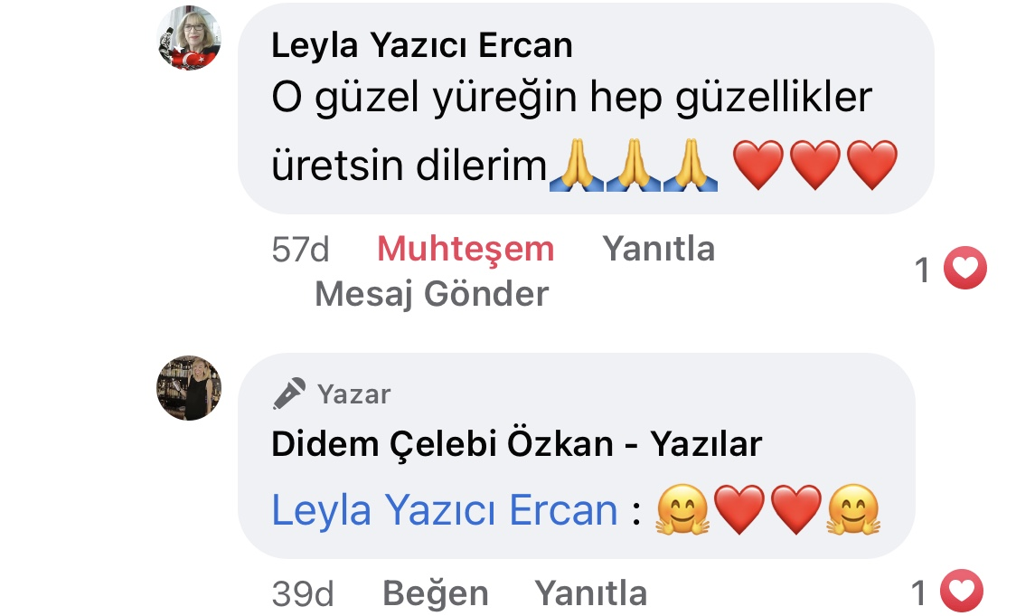 Hezeyan | Didem Çelebi Özkan Yazılar Facebook Sayfası Yorumları | 01_01