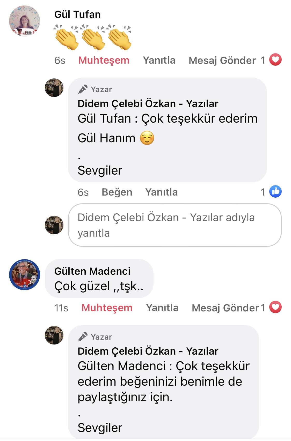 Hezeyan | Didem Çelebi Özkan Yazılar Facebook Sayfası Yorumları | 07