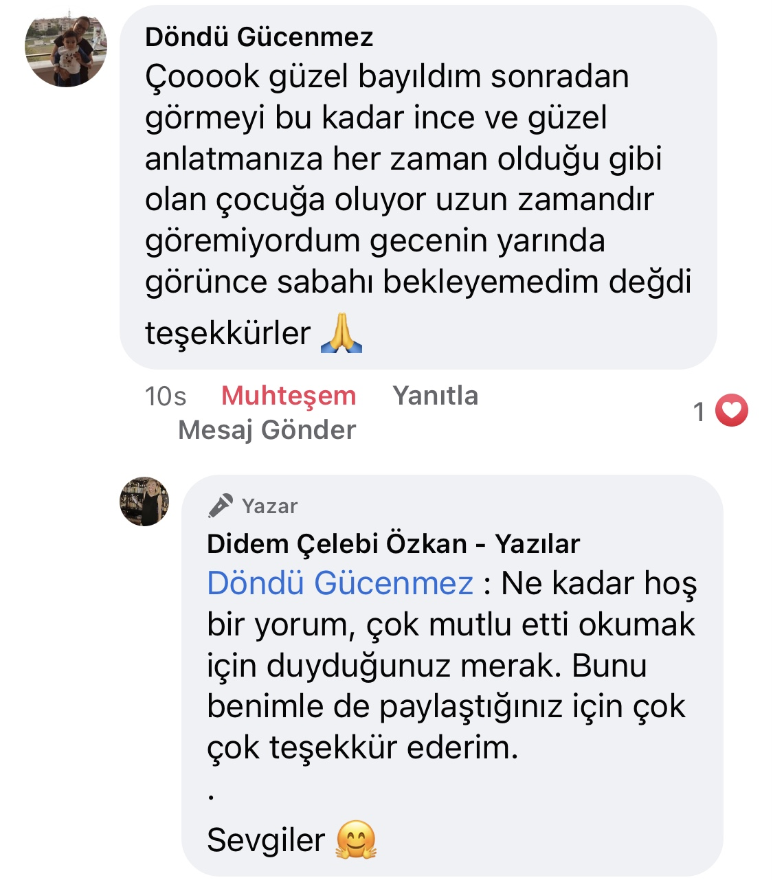 Hezeyan | Didem Çelebi Özkan Yazılar Facebook Sayfası Yorumları | 10
