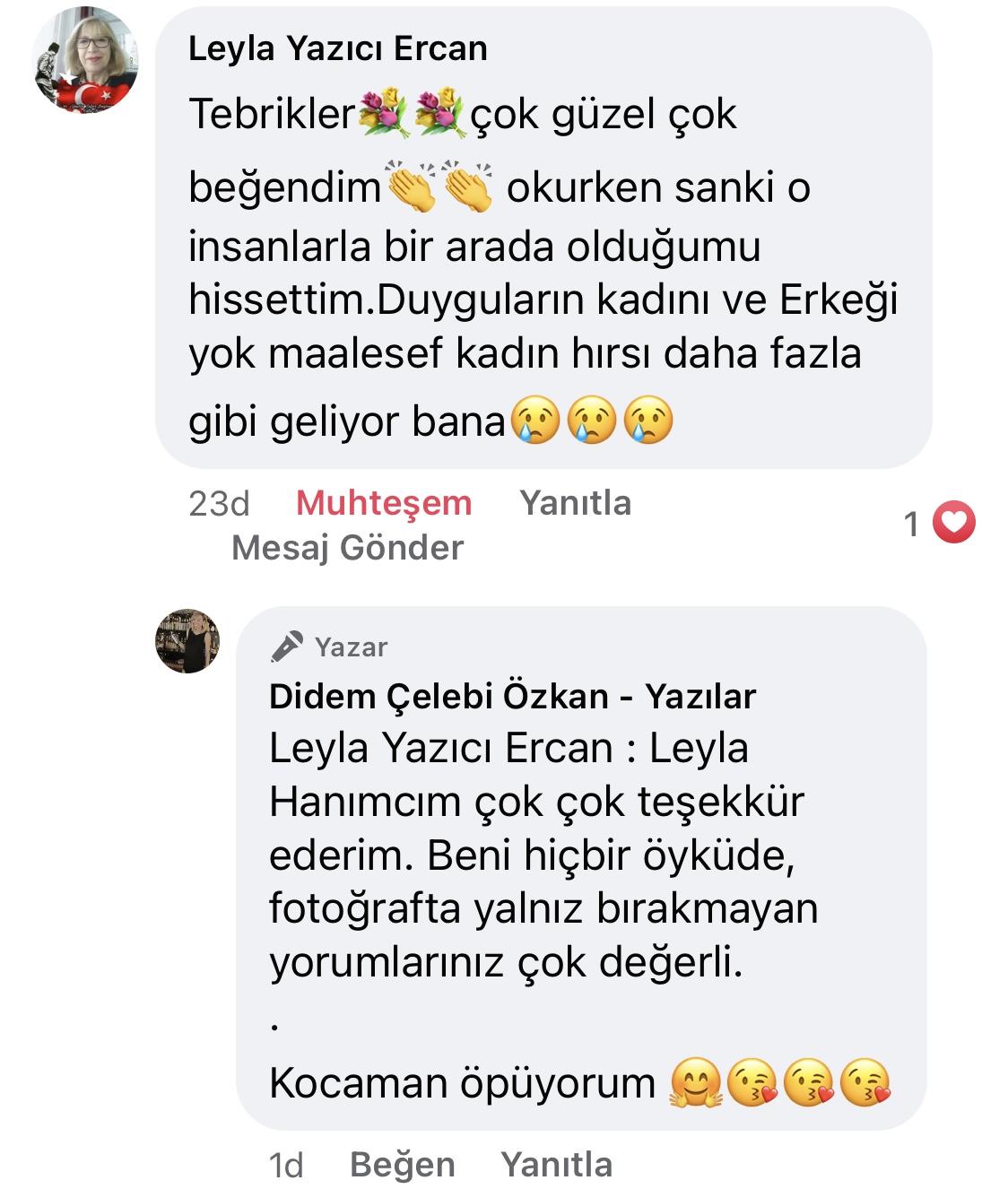 Hezeyan | Didem Çelebi Özkan Yazılar Facebook Sayfası Yorumları | 01