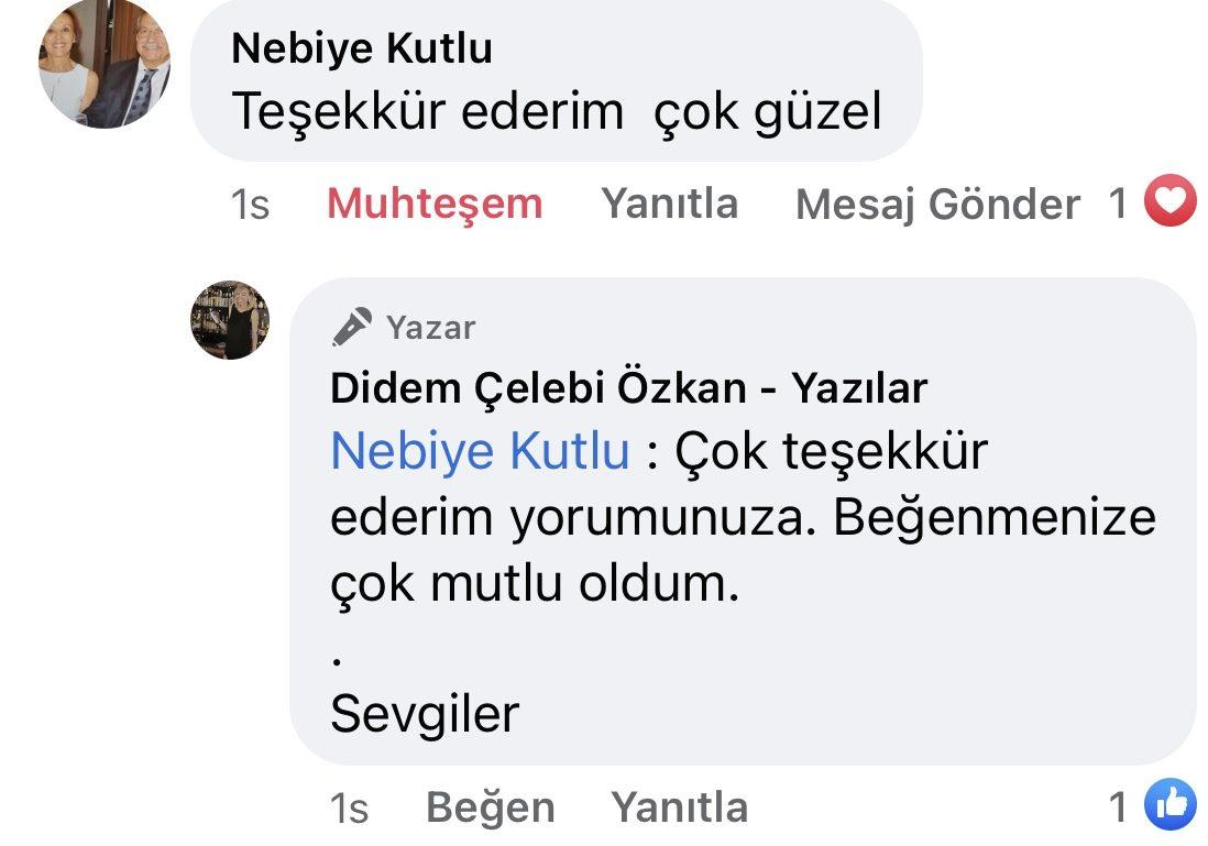 Hezeyan | Didem Çelebi Özkan Yazılar Facebook Sayfası Yorumları | 06