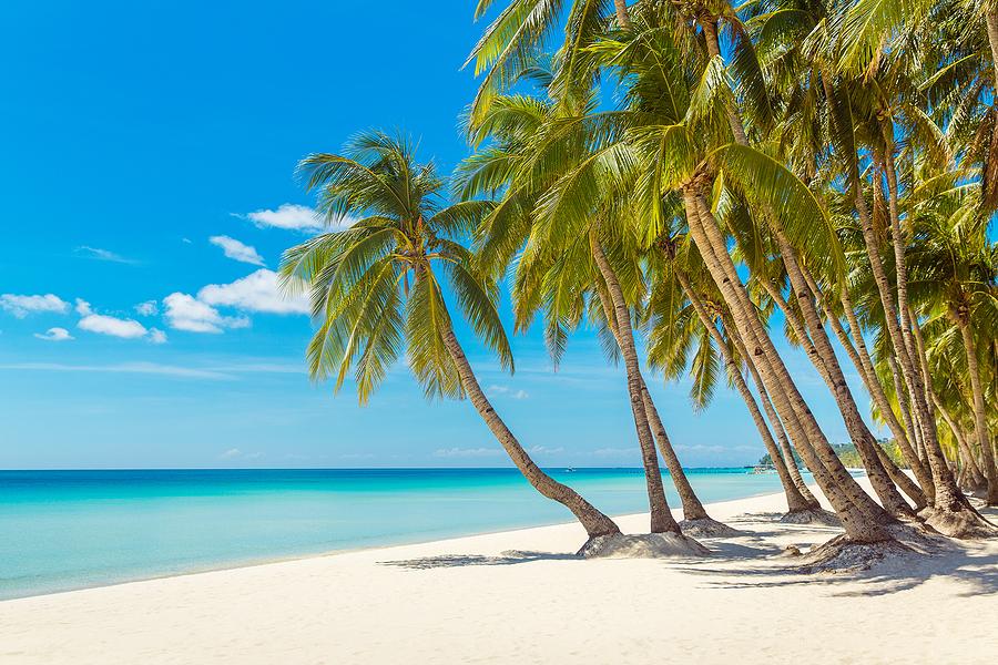 Yazı: Boracay | Filipinler'in En Ünlüsü | Yazan: Melih Daşgın