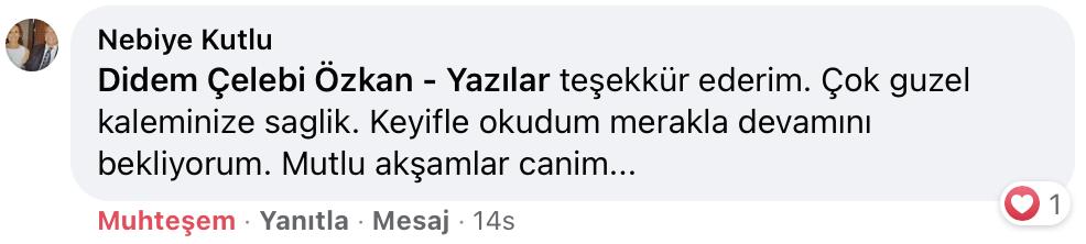 Belki Şimdi Doğru Zamandır   Didem Çelebi Özkan Yazılar Facebook Sayfası Yorumları   04