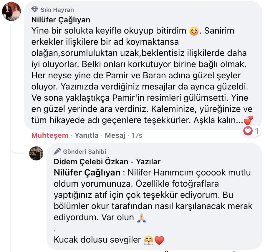 Uyanıp Öpmeyi İstediğim Kadın   Didem Çelebi Özkan Yazılar Facebook Sayfası Yorumları   03
